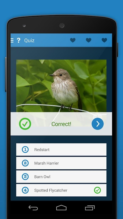 iKnow Birds 2 PRO - Europe Screenshot 7