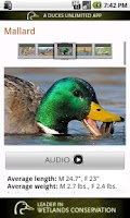 Screenshot of Ducks Unlimited