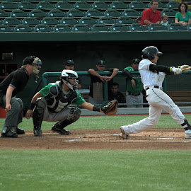 South Bend Silver Hawks by Lori Rider - Sports & Fitness Baseball ( indiana, catcher, umpire, baseball, action, batter )