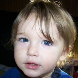 look at those eyes... by Amanda Reel-White - Babies & Children Toddlers (  )