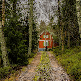 Red and Green by Bojan Bilas - Buildings & Architecture Homes ( home, path, forest, architecture, house,  )