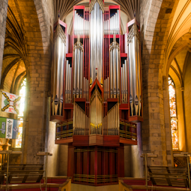 St Giles Organ View by Don Alexander Lumsden - Buildings & Architecture Places of Worship