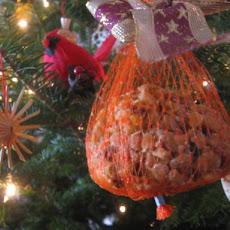 Suet Balls for Birds (For Christmas)
