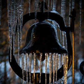 Icy Bell by Dale Pausinga - Artistic Objects Other Objects ( bell, winter, ice, sunrise, black,  )