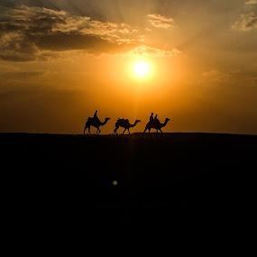 Thar Desert Sunset by Kapil Shendge - Landscapes Sunsets & Sunrises ( jaisalmer, thar, rajasthan, india,  )