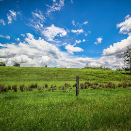 Blue and green dayboro by Whittney Maree - Landscapes Prairies, Meadows & Fields ( clouds, fence, blue, green, feild, australia, trees )