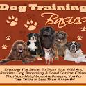 Dog Training Basics