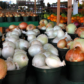 Onion Stand by Robin Morgan - Food & Drink Fruits & Vegetables ( market, farmers market, onion )