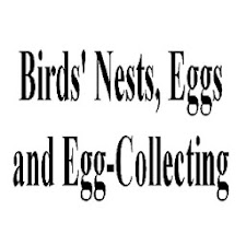 Birds'Nests and Egg Collecting