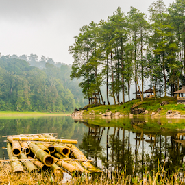 Ciwidey by Erwin Sutarko - Landscapes Forests ( waterscape, indonesia, cloudy, java, forest, landscape, landscapes )