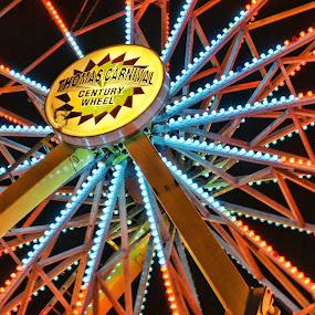 by Charles Ward - City,  Street & Park  Amusement Parks