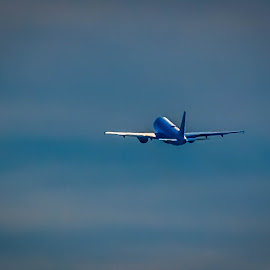 Frontier Airlines Away by Pat Lasley - Transportation Airplanes ( flyiing, aeronautics, airplane, jet )