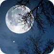 Relax Night.. file APK for Gaming PC/PS3/PS4 Smart TV