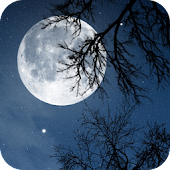 App Relax Night ~ Nature Sounds version 2015 APK