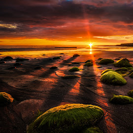 Radiating. by Hallgrimur Helgason - Landscapes Sunsets & Sunrises ( shore, sky, red, radiating, sunset, vivid, yellow, beach, rocks )