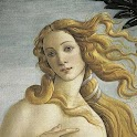 Botticelli Wallpapers icon