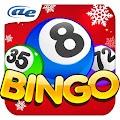 Game AE Bingo: Offline Bingo Games apk for kindle fire