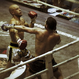Muay Thai 8 by Bim Bom - Sports & Fitness Boxing ( ring, muay thai, thailand, combat, boxing, martial art, fighter, kickboxing )