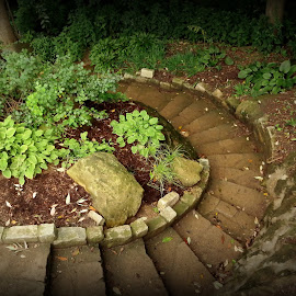 Rock garden steps, Holliday Park, Indianapolis by Lori Rider - Buildings & Architecture Architectural Detail