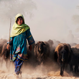 Leading From The Front by Alí AWaís - People Street & Candids ( goats, animals, girl, village, dust, candid, sheep, people )