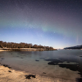 Beach under auroras by Benny Høynes - Landscapes Beaches ( winter, auroras, stars, beach, norway )
