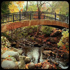 Bridge Over Troubled Waters  by Eric Nusbaum - Instagram & Mobile iPhone ( stream, fall colors, fall, bridge, bridges )