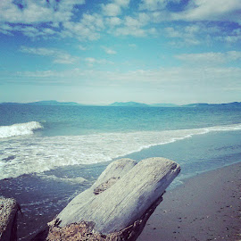 #oakharbor #perfectday #sunshine #beach #josephpark #waves #playtime #relaxing #blueskies #water by Brandi Wright - Nature Up Close Water