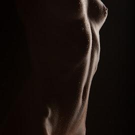Alina by Vadim Gunko - Nudes & Boudoir Artistic Nude ( models, body, girls, nude, shadows,  )