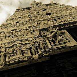 The indian temple by Karan Shah - Buildings & Architecture Places of Worship ( temple, ancient, indian, architecture, tamil nadu )