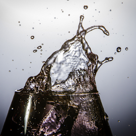 by Ian McGuirk - Abstract Water Drops & Splashes