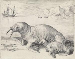 RIJKS: Hessel Gerritsz: print 1632