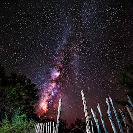 Heavens Gate  by David Savoie - Landscapes Starscapes ( orange, star, milky way, fence, sky, tree, bushes, dark, night, pink, long exposure, light, black,  )
