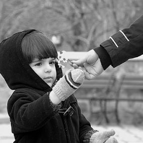 by Selçuk Özkan - Babies & Children Children Candids ( child, black white, children, daisy, people, boy, portrait, kid )