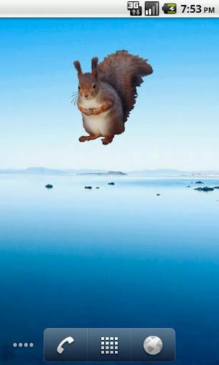 Squirrel Sitting Sticker