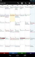 Screenshot of Business Calendar Pro