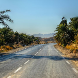 Route De Biskra by Kassem Mustapha - Landscapes Deserts