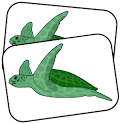 Kids Memory - Sea Life icon