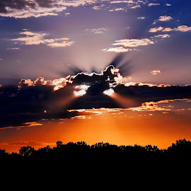 Dumbo? by Derrill Grabenstein - Landscapes Cloud Formations ( clouds, ', elephant, dumbo, sunrise, sun )