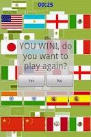 Screenshot of Memory Flag Game