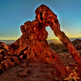 Elephant Rock Sunrise by Roxie Crouch - Landscapes Caves & Formations ( las vegas, desert, elephant, nevada, formations, red rock, sunrise )