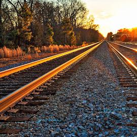 Cargill Tracks by Lou Plummer - Transportation Railway Tracks (  )