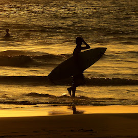 I'm home Dad by Bob  Matkodak - Sports & Fitness Surfing