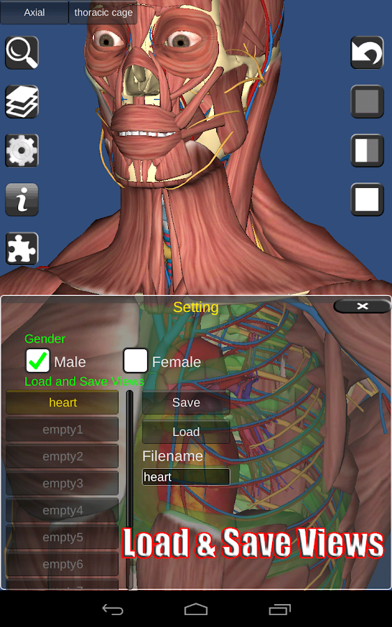 3D Anatomy Screenshot 14
