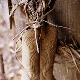 Old Boot by Stephanie Turner - Digital Art Things ( old, transportation, artistic objects, things, boots, dusty )