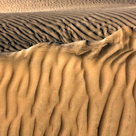 A wall of sand. by Gale Perry - Landscapes Deserts (  )