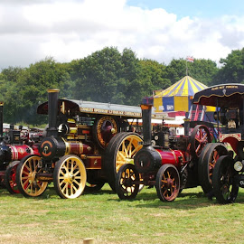 by Denise Dale - Transportation Other ( engine, wheels, heavy load, fair, steam,  )