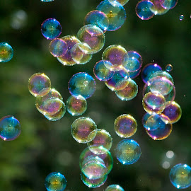 Tiny Bubbles by Angela Eggers-Tolleth - Abstract Patterns ( abstract, circles, games, bubbles, fun )