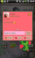 Screenshot of GO SMS Watermelon Heart Theme