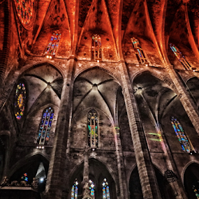 The Palma de Majorca Cathedral or 'La Seu' by Peter Wabbel - Buildings & Architecture Places of Worship ( interior, building, masterofthemoment, palmademallorca, cathedral, worship, majorca, catedral, kathedrale, peterwabbel, laseu )