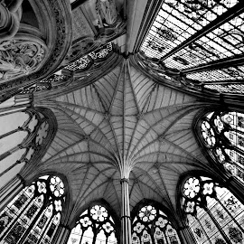 Ceiling by Iulia Breuer - Buildings & Architecture Architectural Detail ( black and white, ceiling )